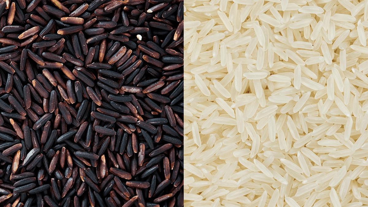 黑米VS白米比較